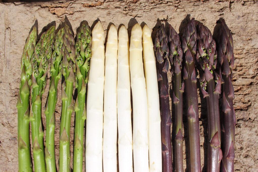 tricolore asparagi